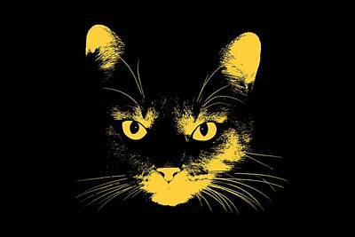 Digital Art - Cat Stare With Transparent Background by John Haldane