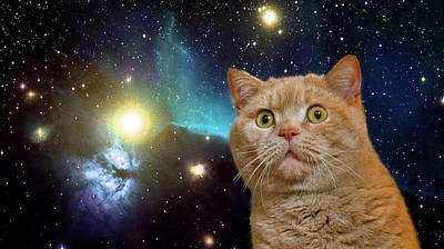 Cat Staring At The Universe Art Print by Johnnie Art