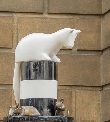 Photograph - Cat Statue by Jean Noren
