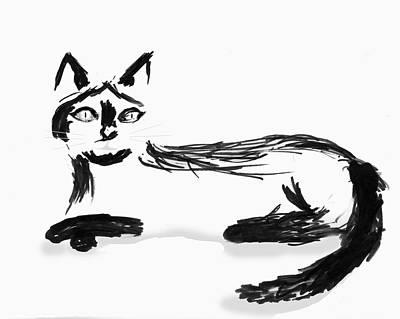 Drawing - Cat by Steve Karol