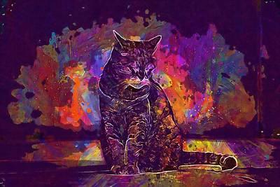 Digital Art - Cat Street Animal Cute Pets  by PixBreak Art