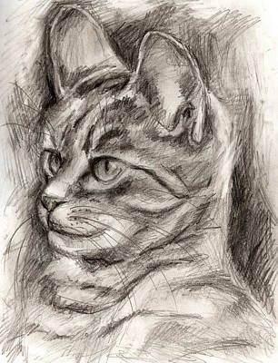 Cat Study Drawing No Three Art Print by Hiroko Sakai