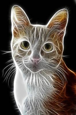 Pet Portraits Digital Art - Cat by Tilly Williams
