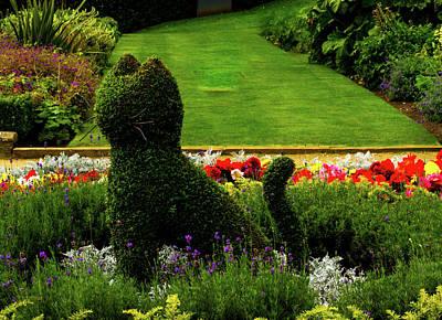 Cat Topiary Belfast Art Print