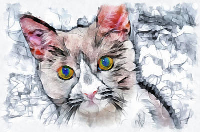 Painting - Cat Watercolor Digital Art by Matthias Hauser