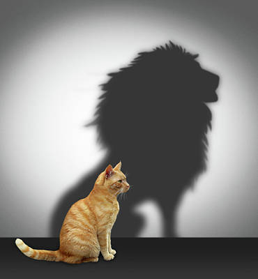 Boss Digital Art - Cat With Lion Shadow by Cranach Studio