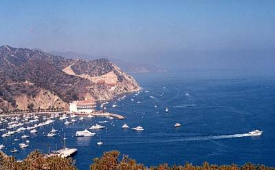 Catalina Calif............ Art Print