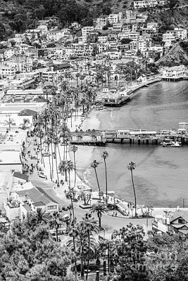 Pier Houses Photograph - Catalina Island Aerial Black And White Photo by Paul Velgos