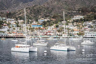 Catalina Island Avalon Bay Boats  Print by Paul Velgos
