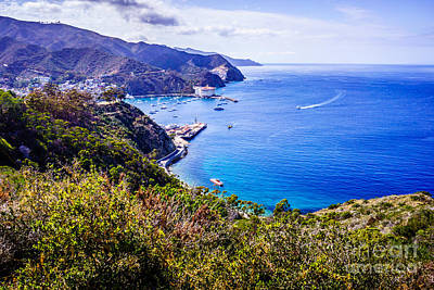 Avalon Photograph - Catalina Island Avalon Bay From Above by Paul Velgos