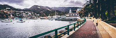 Yacht Photograph - Catalina Island Avalon Bay Panorama Picture by Paul Velgos
