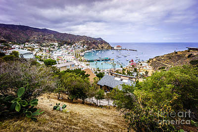 Catalina Island Avalon California From Above Art Print by Paul Velgos