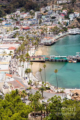 Catalina Island Avalon Waterfront Aerial Photo Art Print by Paul Velgos