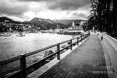 Avalon Photograph - Catalina Island Casino Way Black And White Photo by Paul Velgos
