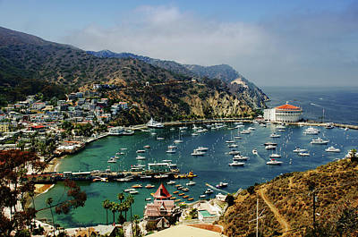 Photograph - Catalina Island by Joseph Hollingsworth