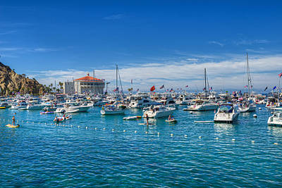 Photograph - Catalina Island Moorings Avalon by David Zanzinger