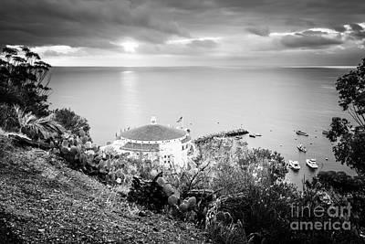 Black Cactus Photograph - Catalina Island Sunrise Black And White Photo by Paul Velgos