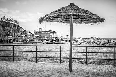 Catalina Island Umbrella In Black And White Print by Paul Velgos