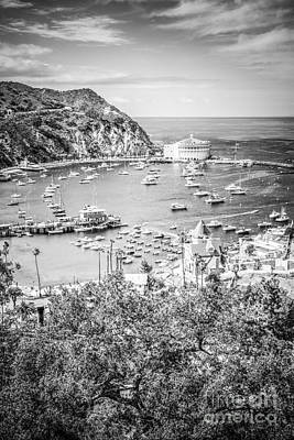 Catalina Island Vertical Black And White Photo Art Print by Paul Velgos