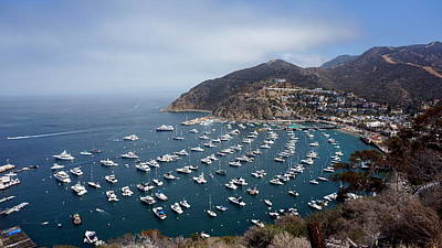Photograph - Catalina Island View by Laurie Pike