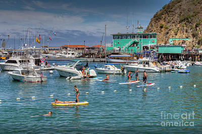 Photograph - Catalina Island Water Sports by David Zanzinger