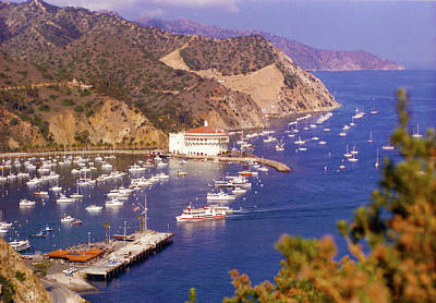 Photograph - Catalina Kodachrome 2 by Floyd Snyder