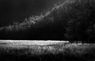 Photograph - Cataloochee Morning by Gray  Artus