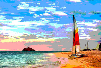Mixed Media - Catamaran by Charles Shoup