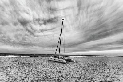 Winter Animals - Catamaran in Orange Beach AL by John McGraw