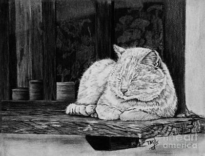 Drawing - Catatonic by Terri Mills