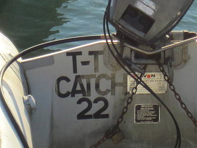 Catch 22 Print by Philip de la Mare