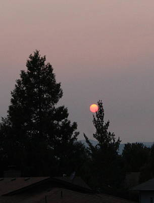 Photograph - Catch A Setting Sun by Marie Neder