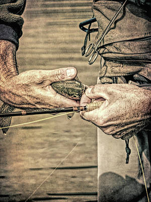 Photograph - Catch And Release Rainbow Trout Grunge by Jennie Marie Schell