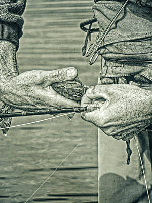 Photograph - Catch And Release Rainbow Trout In Green Monotone by Jennie Marie Schell