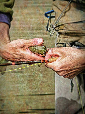 Photograph - Catch And Release Rainbow Trout by Jennie Marie Schell