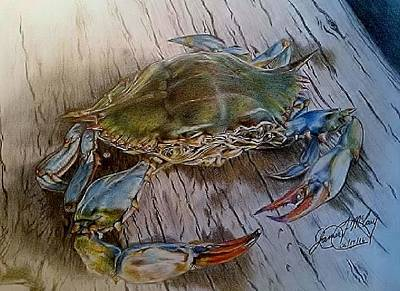 Blue Crab Drawing - Catch Me If You Can by James McCary