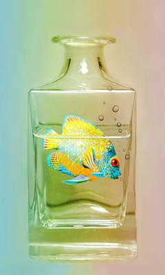 Catch Of The Day Art Print by Diana Angstadt