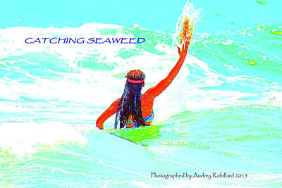 Photograph - Catching Seaweed by Audrey Robillard