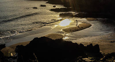 Photograph - Catching The Light by Noel O Neill