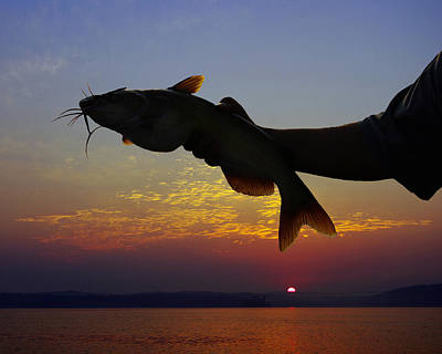 Catfish At Sunrise Art Print by Ron Kruger