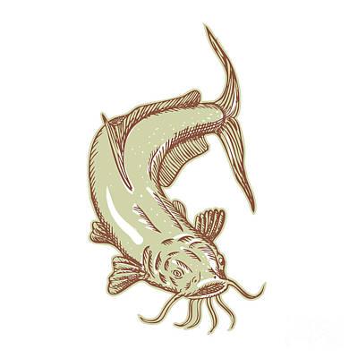 Catfish Digital Art - Catfish Mud Cat Diving Etching by Aloysius Patrimonio