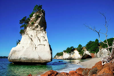 Photograph - Cathedral Cove by Mark Dodd