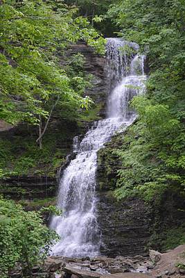 Photograph - Cathedral Falls - Gauley Bridge Wv by rd Erickson