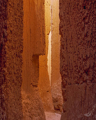 Patterns In Nature Photograph - Cathedral Gorge Canyon by Leland D Howard