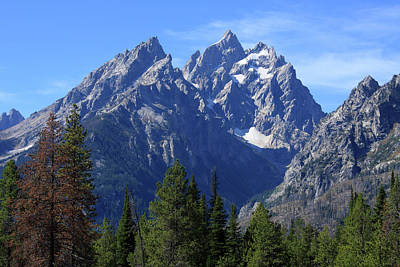 Photograph - Cathedral Peaks, Grand Tetons National Park by Aidan Moran