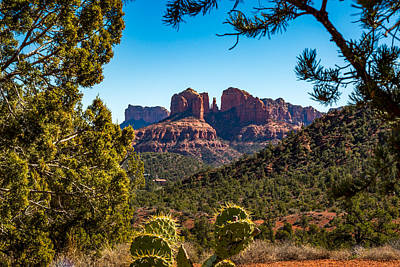 Cathedral Rock Photograph - Cathedral Rock #1 by Jon Manjeot