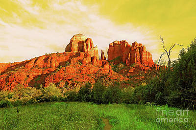Photograph - Cathedral Rock Az by Afrodita Ellerman