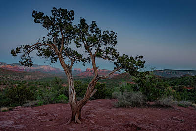 Photograph - Cathedral Rock Overview by Gary Lengyel