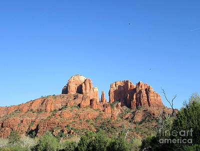 Photograph - Cathedral Rock Ravens by Marlene Rose Besso