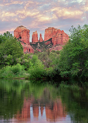 Cathedral Rock Reflected In Oak Creek Art Print by Loree Johnson